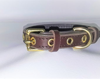 Tan on Brown leather dog collar with Solid Brass hardware for small dogs