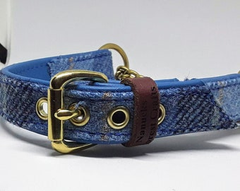 Blue Harris tweed Blue leather Martingale dog collar with solid brass hardware