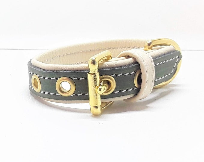 Featured listing image: Green on cream leather dog collar with Solid Brass hardware for small dogs