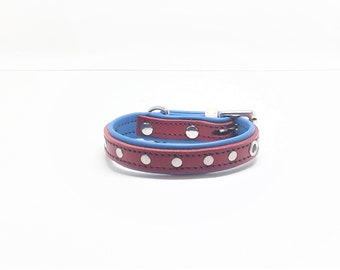 Studded Red & Blue leather dog collar with Nickle plate hardware for small dogs