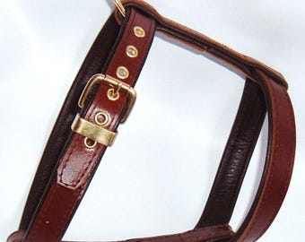 Tan on Brown leather dog harness with brass hardware