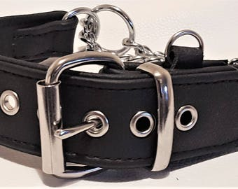 Black and Black leather Martingale dog collar with ID tag loop