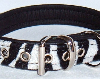 Zebra print faux fur fabric and Black leather dog collar