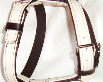 Pale Cream on Brown leather dog harness with nickle hardware