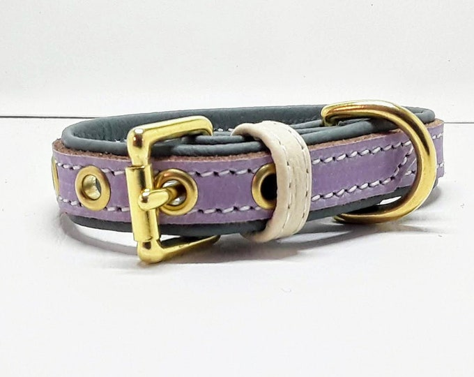 Featured listing image: Lavender on Green leather dog collar with Solid Brass hardware for small dogs