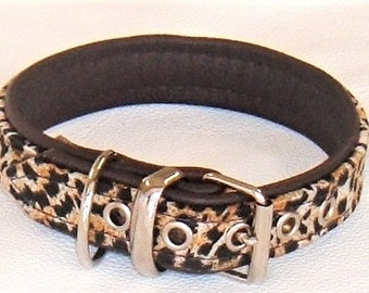Leopard print satin fabric and Brown leather dog collar