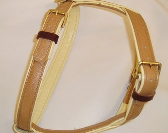 Tan on Cream leather dog harness with brass hardware