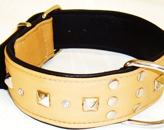 Sandy Tan on Black leather studded dog collar with Diamantes