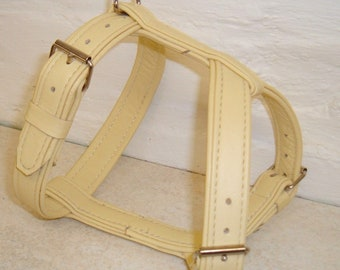 Cream on leather dog harness with nickle hardware