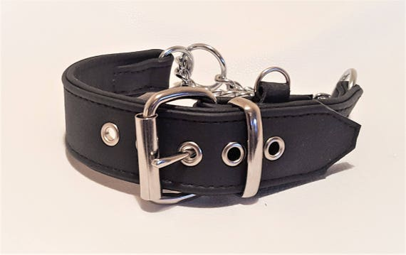 Tan on Black Leather Martingale dog Collar with Extra id Loop Ring