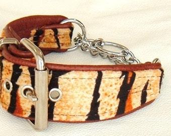 Orange Tiger print fabric and Tan leather Martingale dog collar