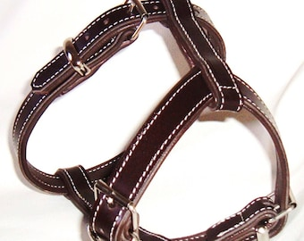 Dark Brown on Brown leather dog harness with nickle hardware