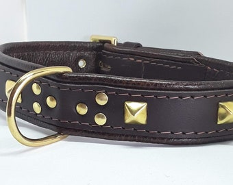 Chunky dark Brown leather dog collar with studs and Solid Brass hardware