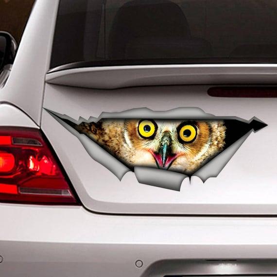 SELECT SIZE Owls Set of 3 Car Vinyl Sticker