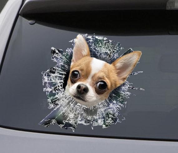 Car Sticker Chihuahua