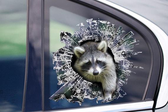 Waschbar Fenster Aufkleber Autoaufkleber Etsy