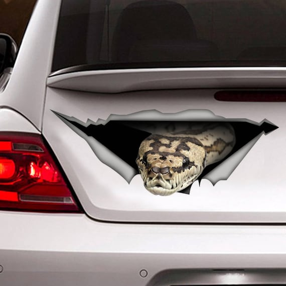 Snakes Spiders Car Decals Stickers Decal Junky