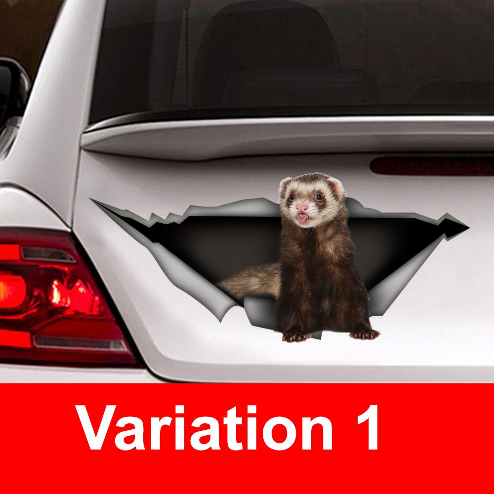 Funny Ferret Car Sticker