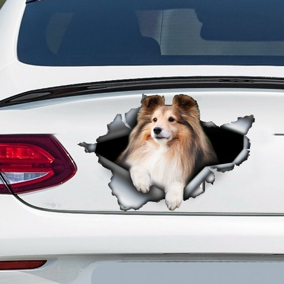 V02 Sheltie Dog Sign Decal Shetland Sheepdog on Board Car Window Sticker