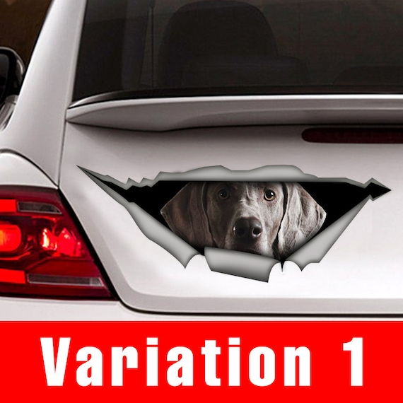 Weimaraner car decal , pet decal, Vinyl decal, weimaraner sticker, funny  decal, dog sticker
