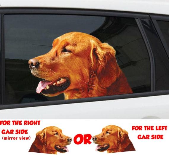 Springer Spaniel on Board English Dog Sign Decal Car Window Sticker V02