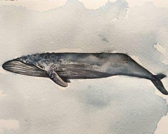 Original whale watercolor