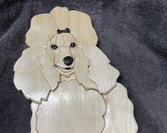 sitting poodle
