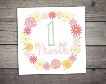 12 Baby Monthly Milestones, Printable Digital file, Baby, Milestones, Monthly, Floral Art, Nursery, Photo, Sign, Girly, Shabby Chic