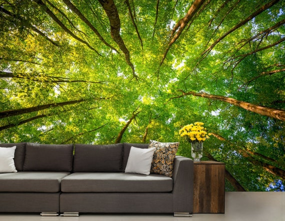 Ceiling Forest Wallpaper Trees Wall Mural Green Tree Forest Forest Mural Ceiling Wall Decal Pines Wall Mural Moor Wall Mural Ceiling