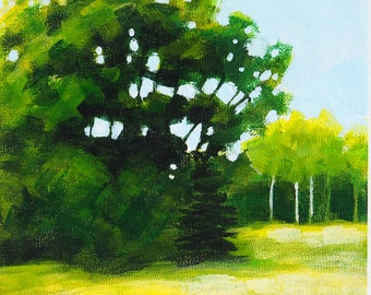 """Landscape painting, small summer trees and field, sunny day, acrylic on 6"""" x 6"""" panel"""