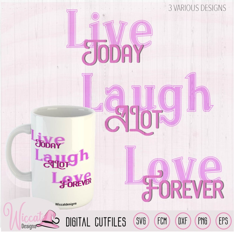 Inspirational quote positive wall decor live today laugh a image 0