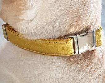 Golden Soft PU Leather Collar//Leash//Bracelet. With Metal Hardware