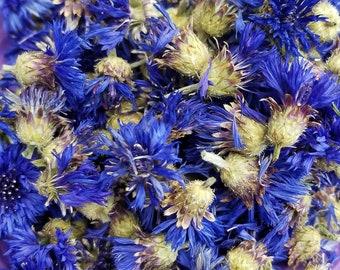 Dried Blue Bachelor's Button, Cornflower, Centaurea cyanus, Dried Flowers, Dried Flower Bouquet, Blue Flowers, Flower Potpourri