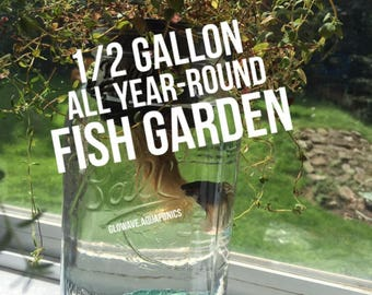 All Year-Round Mason Jar Fish Garden (Half Gallon Size)