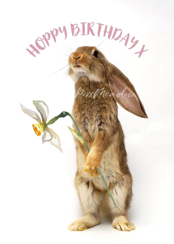 Happy / Hoppy Birthday Rabbit Cute Bunny with Watercolour Daffodil Photo  Card 5 x 7