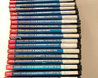 Barron's Book Notes - Lot of 27