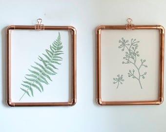 Copper Framed Botanical Prints