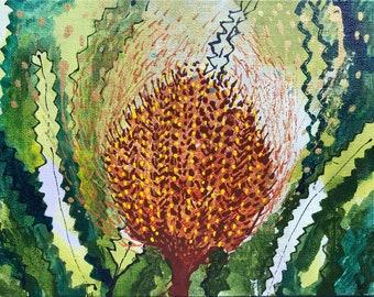 Golden Crown Banksia
