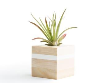 Air Plant Display, White Air Plant Holder, Christmas Gifts, Christmas Gifts, Small Air Planters, Mom Gifts, Shelf Decor Plants, Desk Plant