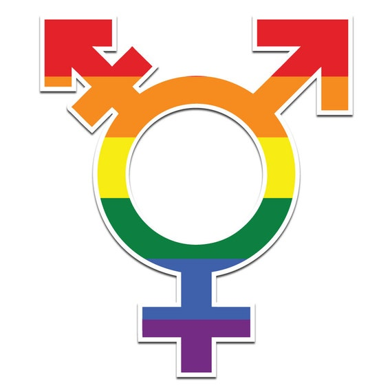 Image result for official transgender pride symbol
