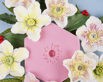 Hellebore Flower Mould