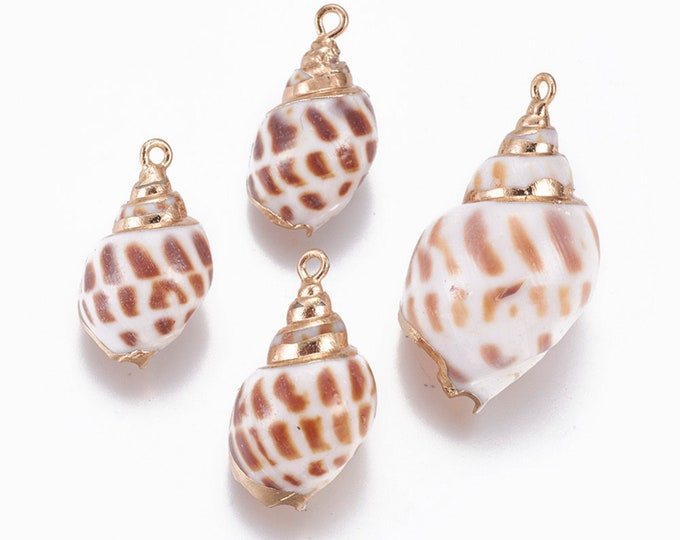 Natural Sea Shell Pendant | 18K Gold Plated Spiral Conch Shell | Sold Individually | Size 26~37x14~22mm