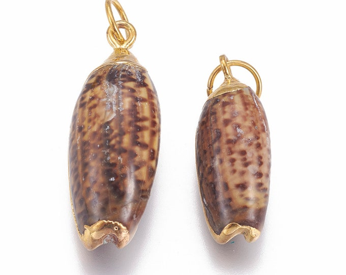 Natural Sea Shell Pendant | 18K Gold Plated Spiral Conch Shell | Sold Individually | Size 25~31x9~12mm