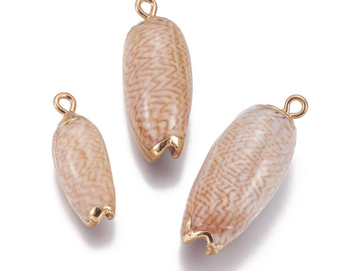 Natural Sea Shell Pendant | 18K Gold Plated Spiral Conch Shell | Sold Individually | Size 25~33x9~14mm