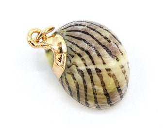 1 Piece Gold Plated Natural Sea Shell Trumpet Conch Pendant Bead 17x12x11mm