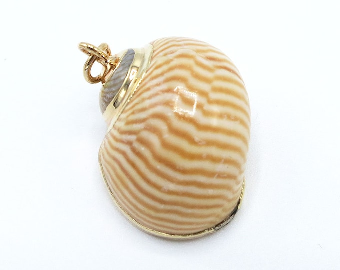 1 Piece Gold Plated Natural Sea Shell Trumpet Conch Pendant Bead 17x15x11mm