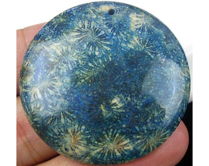 Blue Ammonite Fossil Round Gemstone Pendant Focal Bead 41x8mm D23727