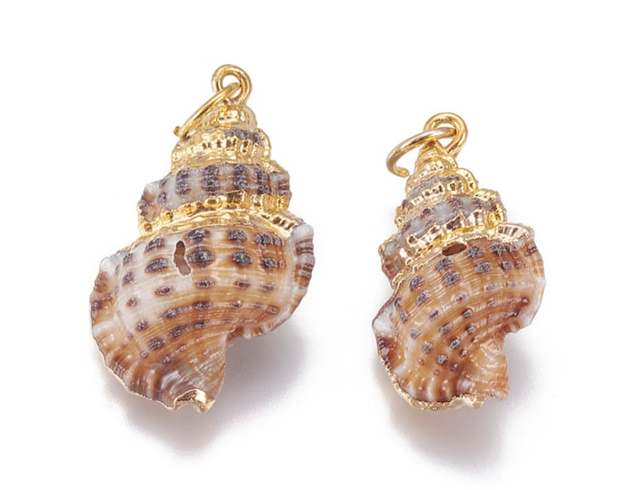 Natural Sea Shell Pendant | 18K Gold Plated Spiral Conch Shell | Sold Individually | Size 27~31x16~19mm