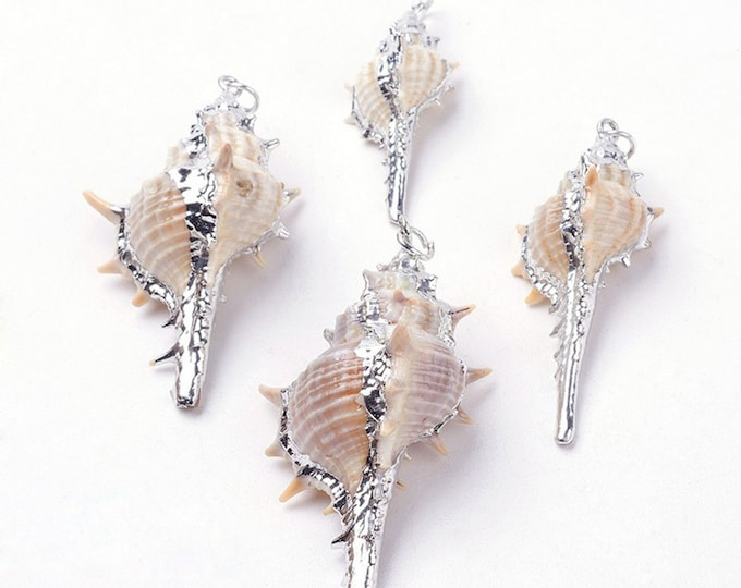 Natural Sea Shell Pendant | Silver Plated Conch Shell | Sold Individually | Size 32~72x14~35x12~21mm