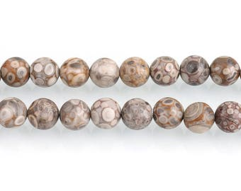 Ocean Fossil Jasper Beads | Maifan Jasper Beads | Round Natural Gemstone Loose Beads | Sold by Strand | 4mm 6mm 8mm 10mm